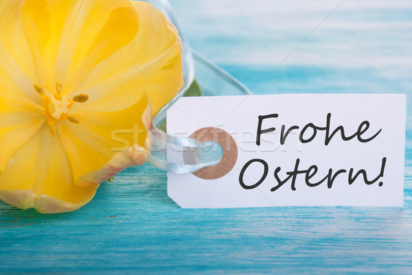 Banner with Frohe Ostern Stock photo © Nelosa