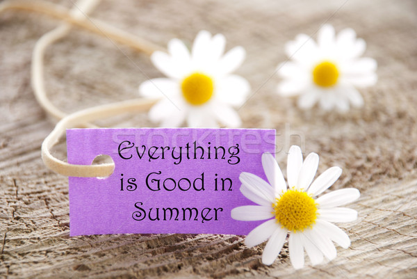 Label with Everything is Good in Summer Stock photo © Nelosa