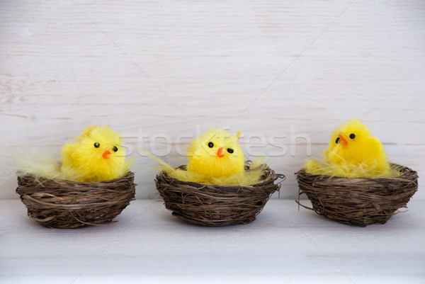 Three Chicks In Baskets With Copy Space And Feathers Stock photo © Nelosa