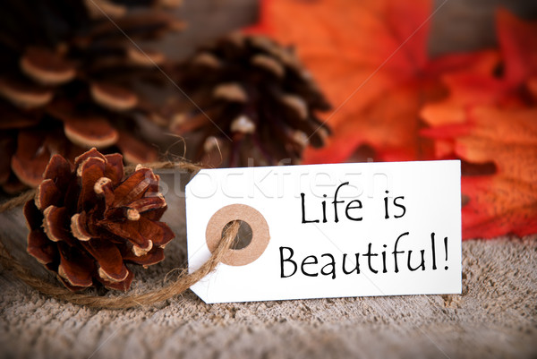Fall Tag with Life is Beautiful Stock photo © Nelosa