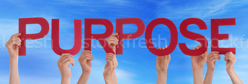 Many People Hands Holding Red Straight Word Purpose Blue Sky Stock photo © Nelosa