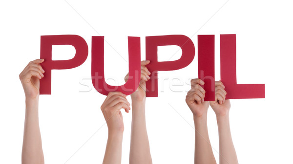 Many People Hands Holding Red Straight Word Pupil Stock photo © Nelosa