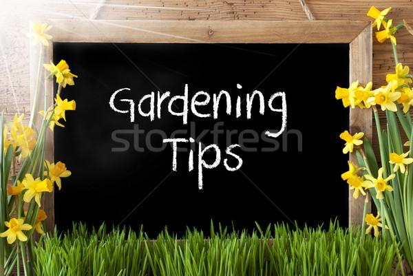 Napos tavasz tábla szöveg kertészkedés tippek Stock fotó © Nelosa