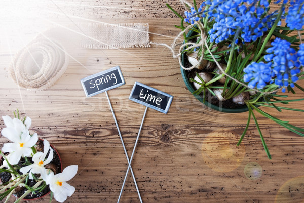 Sunny Flowers, Signs, Text Springtime Stock photo © Nelosa