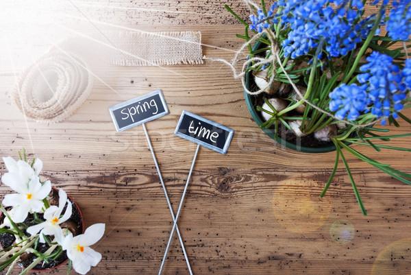 Солнечный цветы признаков текста весна два Сток-фото © Nelosa