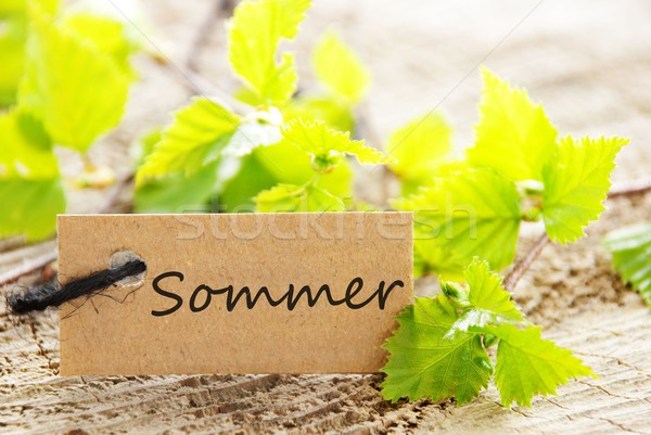 label with Sommer Stock photo © Nelosa