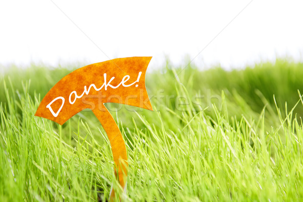 Label With German Danke Which Means Thank You On Green Grass Stock photo © Nelosa