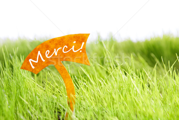 Label With French Merci Which Means Thank You On Green Grass Stock photo © Nelosa