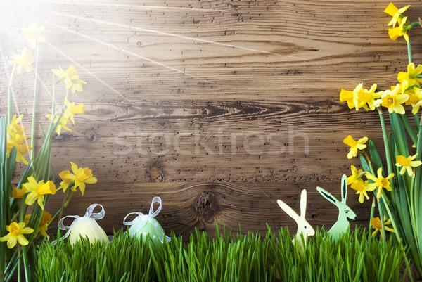 Güneşli Paskalya dekorasyon metin mutlu hafta sonu Stok fotoğraf © Nelosa
