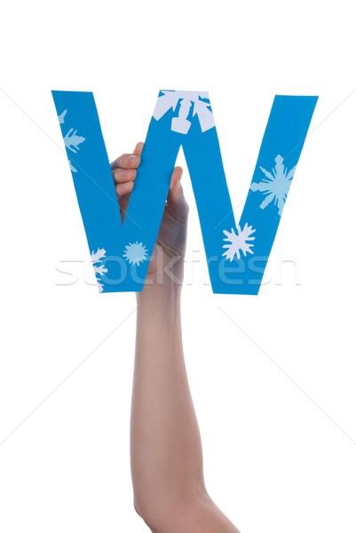 Strony niebieski list w odizolowany śniegu Zdjęcia stock © Nelosa