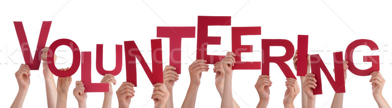 Many People Hands Holding Red Word Volunteering  Stock photo © Nelosa
