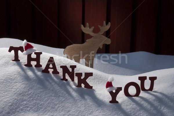 Stock fotó: Karácsonyi · üdvözlet · jávorszarvas · mikulás · kalap · hó · köszönjük