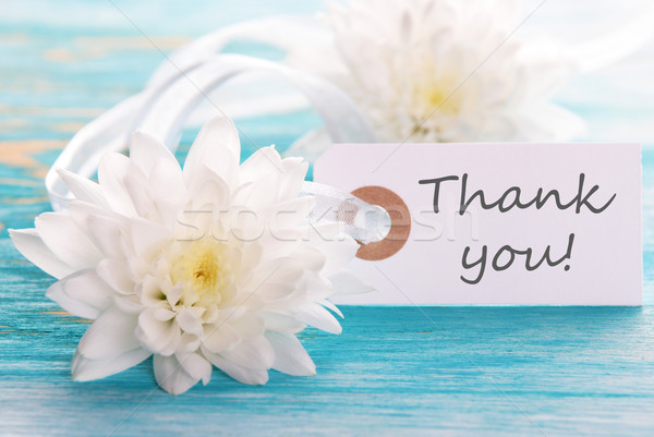 Label with Thank You on It Stock photo © Nelosa