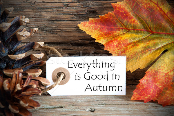 Tag with Everything is Good in Autumn Stock photo © Nelosa