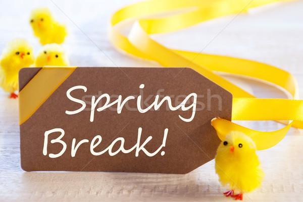 Címke szöveg tavaszi szünet egy barna Stock fotó © Nelosa