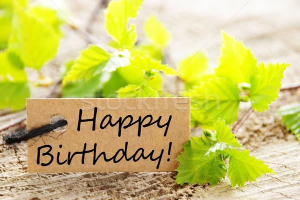 étiquette joyeux anniversaire naturelles regarder feuilles vertes bois Photo stock © Nelosa