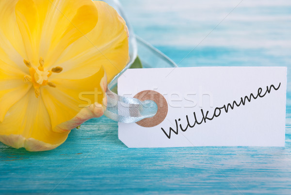 Label with Willkommen Stock photo © Nelosa