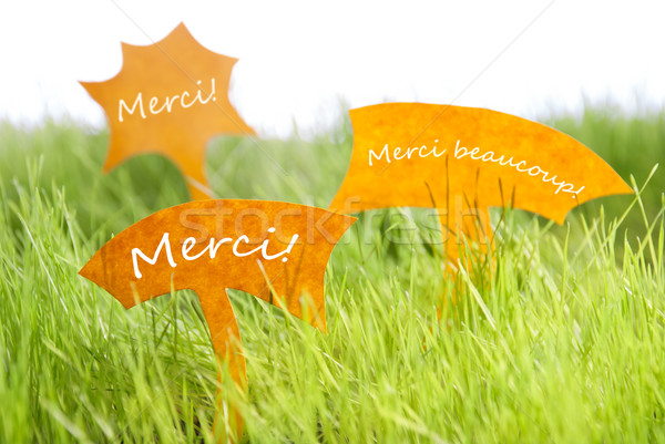 Three Labels With French Merci Which Means Thank You On Grass Stock photo © Nelosa