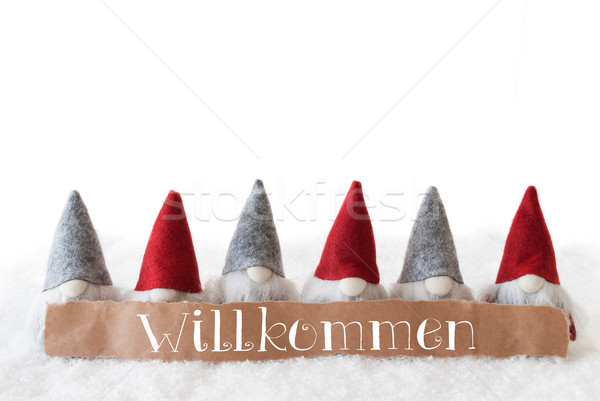 Gnomes, White Background, Willkommen Means Welcome Stock photo © Nelosa