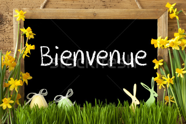 Narcissus, Easter Egg, Bunny, Bienvenue Means Welcome Stock photo © Nelosa