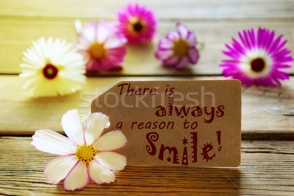 Sunny Label Life Quote There Is Always A Reason To Smile With Cosmea Blossoms Stock photo © Nelosa