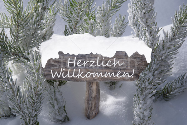 Christmas Sign Snow Fir Tree Willkommen Means Welcome Stock photo © Nelosa