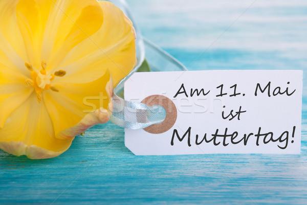 Anneler gün etiket sözler çiçekler Stok fotoğraf © Nelosa