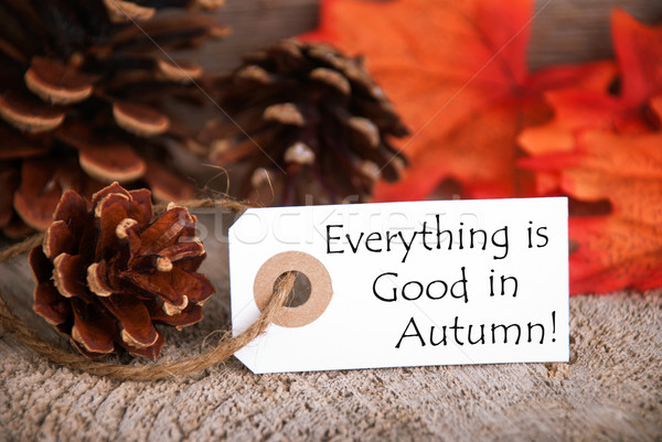 Label with Everything is Good in Autumn Stock photo © Nelosa