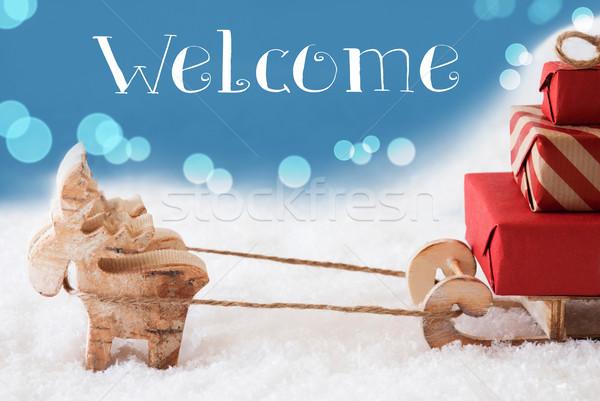 トナカイ 水色 文字 歓迎 ムース 図面 ストックフォト © Nelosa