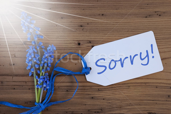 Sunny Srping Grape Hyacinth, Label, Sorry Stock photo © Nelosa