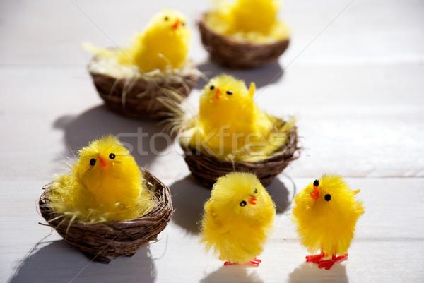 Húsvét kettő áll négy citromsárga Stock fotó © Nelosa