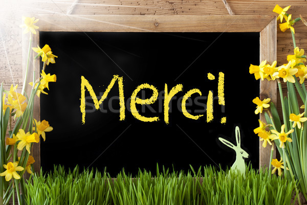Soleado Conejo de Pascua pizarra francés texto Foto stock © Nelosa
