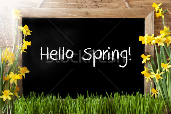 Ensolarado quadro-negro texto olá primavera lousa Foto stock © Nelosa