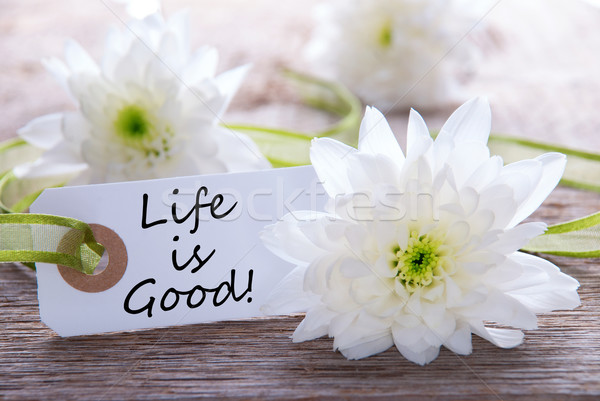 Label with Life is Good Stock photo © Nelosa