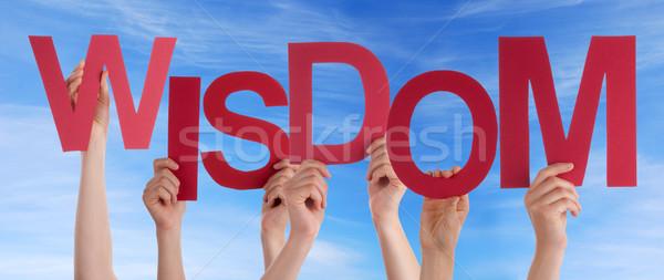Hands Holding Wisdom in the Sky Stock photo © Nelosa