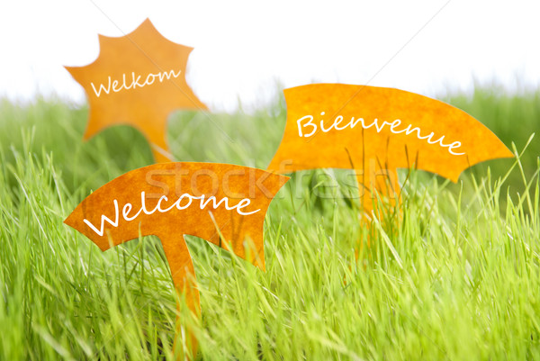 Three Labels With Welcome In Different Languages On Grass Stock photo © Nelosa