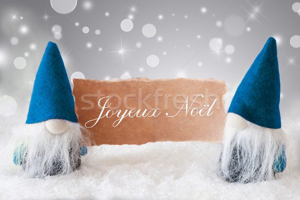 Blue Gnomes With Card, Joyeux Noel Means Merry Christmas Stock photo © Nelosa