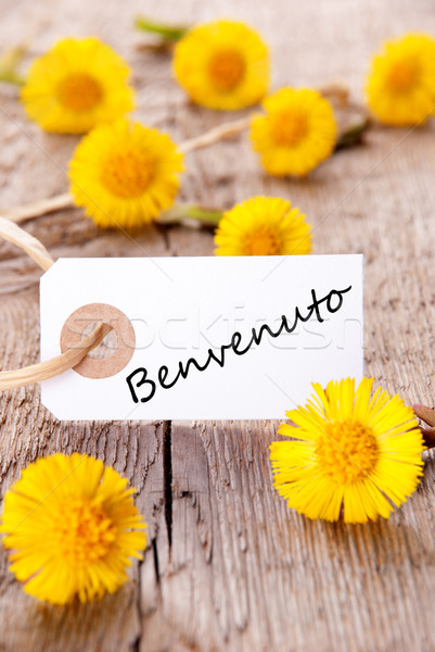 Yellow Flowers with Benvenuto Stock photo © Nelosa