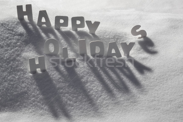 Christmas Card With White Text Happy Holidays On Snow Stock photo © Nelosa
