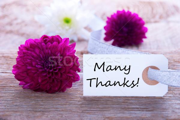 Pourpre beaucoup remerciements étiquette fleurs Photo stock © Nelosa