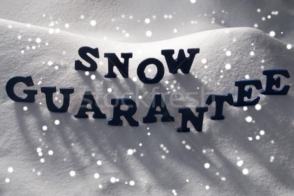 Niebieski słowo śniegu gwarantować płatki śniegu litery Zdjęcia stock © Nelosa
