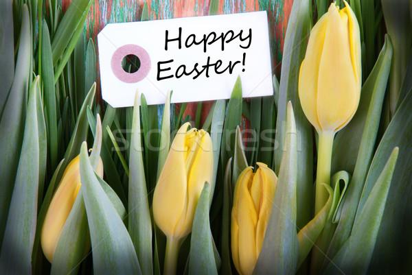 Easter background Stock photo © Nelosa