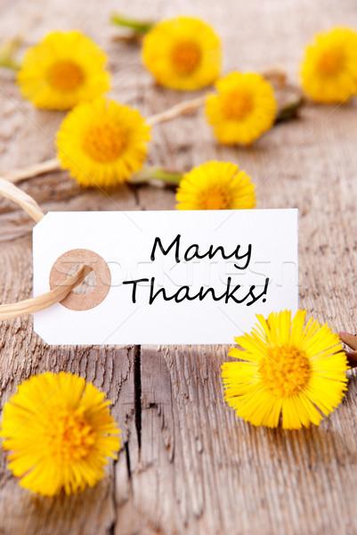 Label veel dank gele bloemen bloem bloemen Stockfoto © Nelosa