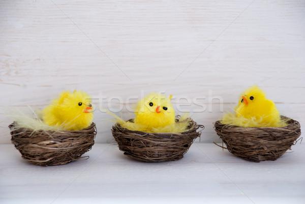 Drie Geel kuikens exemplaar ruimte vergadering praten Stockfoto © Nelosa
