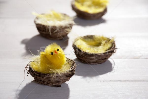 Húsvét kosár fészek citromsárga toll csirke Stock fotó © Nelosa