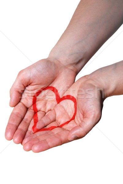Hand geschilderd hart twee handen Stockfoto © Nelosa