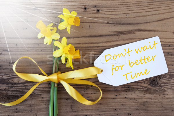 Sunny Spring Narcissus, Label, Quote Not Wait Better Time Stock photo © Nelosa