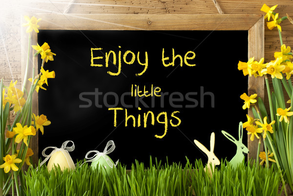 Sunny Narcissus, Easter Egg, Bunny, Quote Enjoy Little Things Stock photo © Nelosa