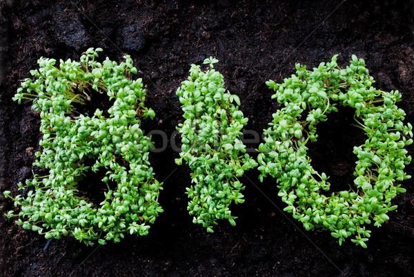 Bio írott szó friss megnőtt étel Stock fotó © Nelosa