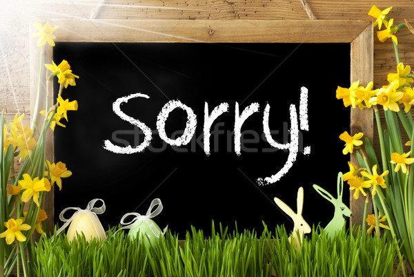 Sunny Narcissus, Easter Egg, Bunny, Text Sorry Stock photo © Nelosa